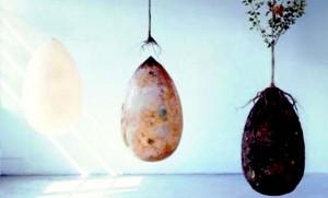 Son cápsulas biodegradables con forma de huevo fabricadas con almidón y que contengan los restos del difunto.